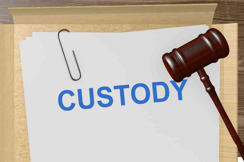 Child Custody Decision Cannot Be Delegated to an Expert